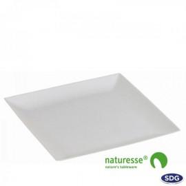 Piatto Polpa Cellulosa 22x22 50pz. 1ct.x10cf.